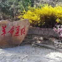 青岛毛公山:无限风光在险峰