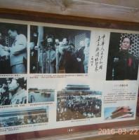 青岛的气候与地理条件